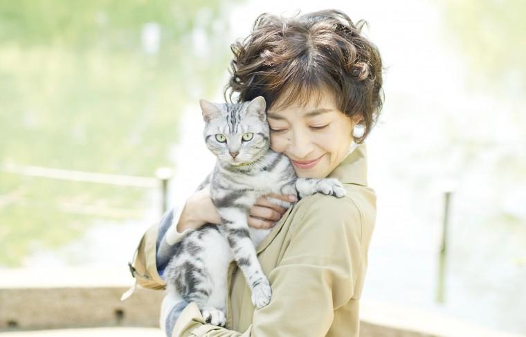 連続ドラマW グーグーだって猫である2 -good good the fortune cat-