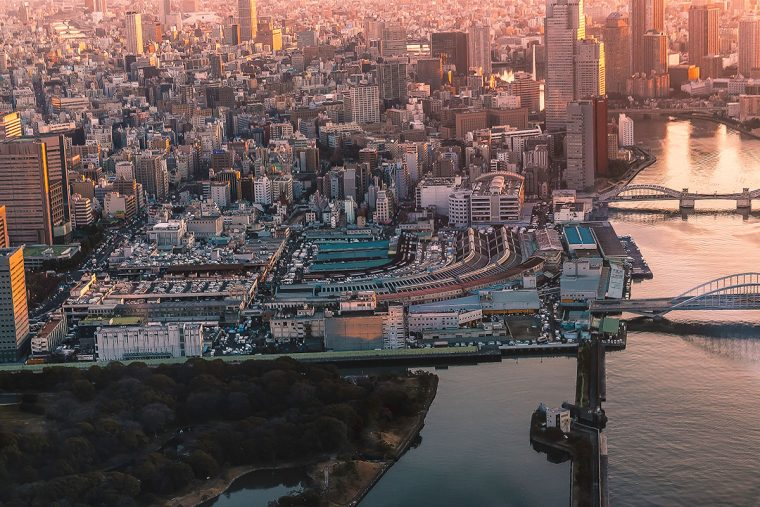 TSUKIJI WONDERLAND (築地ワンダーランド) 築地市場